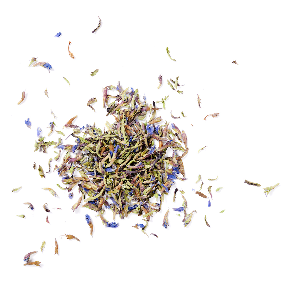 Dreamsville the might of serenity tea herbs