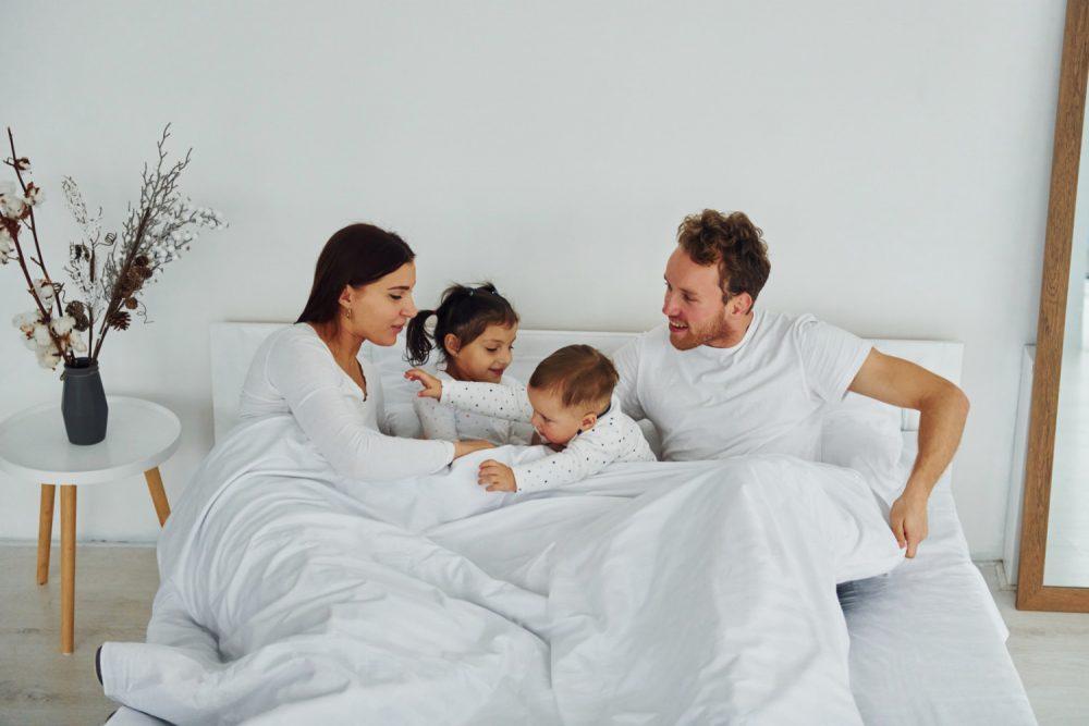 Dreamsville PrimaLoft Bio LuxuryDown Alternative cozy bedroom
